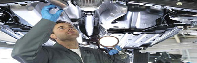 Motor Vehicle Checks _ banner